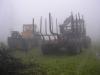 Erdészeti gépek a ködben...